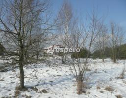 Działka na sprzedaż, Bądzyń, 7000 m²