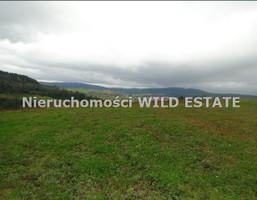 Działka na sprzedaż, Solina, 10300 m²