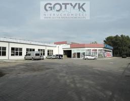 Lokal użytkowy do wynajęcia, Toruń Rudak, 590 m²