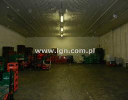 Obiekt na sprzedaż, Lublin Hajdów, 7800 m²