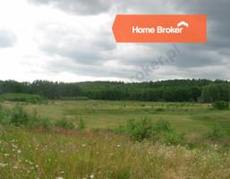 Działka na sprzedaż, Dobiegniew, 186237 m²