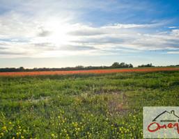 Działka na sprzedaż, Będzin, 989 m²