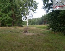 Działka na sprzedaż, Panki Koski, 12360 m²