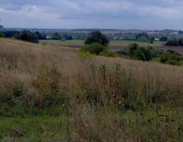 Działka na sprzedaż, Żelewo, 11401 m²