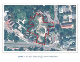 Działka na sprzedaż, Gorzów Wielkopolski Górczyn, 7091 m²