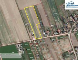 Działka na sprzedaż, Skwierzynka, 11600 m²