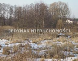 Działka na sprzedaż, Kruszyn Krajeński, 3535 m²