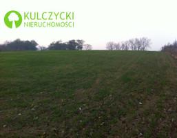 Działka na sprzedaż, Michałowice Dąbrowskich, 3500 m²