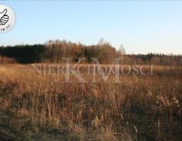 Działka na sprzedaż, Wilkszyn, 1145 m²