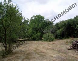Działka na sprzedaż, Gołotczyzna Ogrodowa, 3323 m²