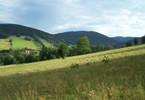 Działka na sprzedaż, Stronie Śląskie Czarna Góra, Sienna, 130000 m²