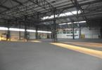 Magazyn, hala do wynajęcia, Zabrze, 1500 m²