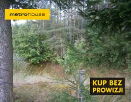 Działka na sprzedaż, Borek Kamienny, 3965 m²