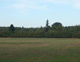 Rolny na sprzedaż, Bieszków, 33500 m²
