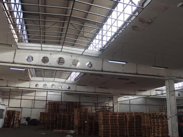 Magazyn, hala do wynajęcia, Dąbrowa Górnicza Gołonóg, 3000 m² | Morizon.pl | 8203