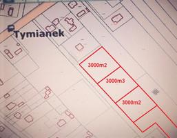 Działka na sprzedaż, Tymianek Koźminek, Tymianek, 3000 m²