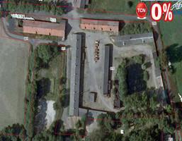 Magazyn, hala na sprzedaż, Środa Wielkopolska Dębicz, 15160 m²