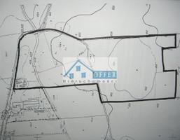 Działka na sprzedaż, Wólka Kosowska, 82000 m²
