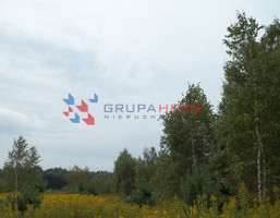 Działka na sprzedaż, Krzaki Czaplinkowskie, 7126 m²