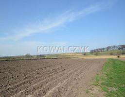 Działka na sprzedaż, Kraków Nowa Huta, 10019 m²