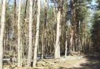 Działka na sprzedaż, Sokolniki-Las, 3033 m²