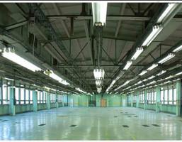 Magazyn, hala do wynajęcia, Pabianice Warszawska 44, 400 m²