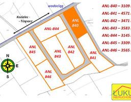 Działka na sprzedaż, Kozielec, 30890 m²