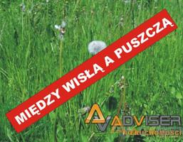 Działka na sprzedaż, Pieńków, 13900 m²