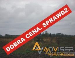 Działka na sprzedaż, Bieniewo-Parcela, 19000 m²