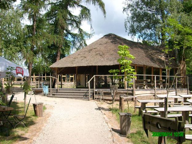 Ośrodek wypoczynkowy na sprzedaż, Pleszew, 1391 m² | Morizon.pl | 4721