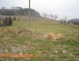 Działka na sprzedaż, Marciszów, 8500 m²