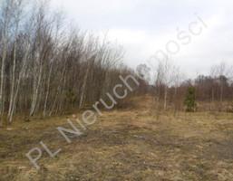Działka na sprzedaż, Maliszew, 7068 m²