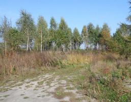 Działka na sprzedaż, Żaby, 3000 m²