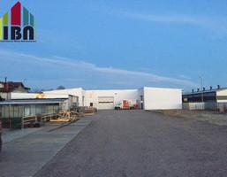 Magazyn na sprzedaż, Dębogórze-Wybudowanie Długa, 600 m²