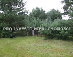 Działka na sprzedaż, Nekielka, 4300 m²