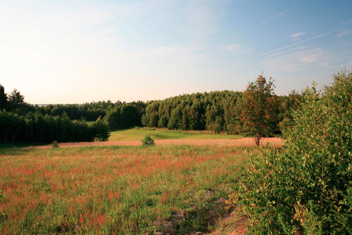 Działka na sprzedaż, Brodnica Górna Na bagnach, 1181 m² | Morizon.pl | 1110