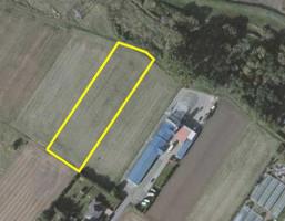 Działka na sprzedaż, Opole Wróblin, 4887 m²