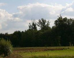 Działka na sprzedaż, Chmielnik, 7200 m²