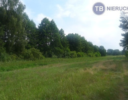 Działka na sprzedaż, Powidz Ostrowo, Nad Jeziorem, 15000 m²