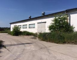 Hala na sprzedaż, Niemodlin, 2900 m²