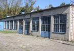 Magazyn, hala na sprzedaż, Łabiszyn, 31482 m²