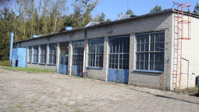 Magazyn, hala na sprzedaż, Łabiszyn, 31482 m²   Morizon.pl   8923