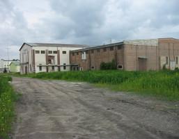 Magazyn, hala na sprzedaż, Opole Lubelskie, 3300 m²