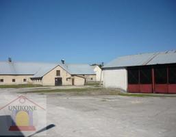 Magazyn na sprzedaż, Ujeździec Baza warsztatowa, 6439 m²