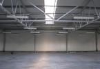 Magazyn, hala do wynajęcia, Kowale Magnacka, 975 m²