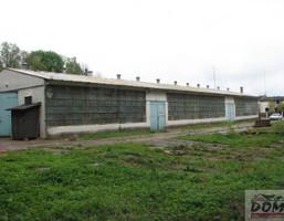 Hala na sprzedaż, Małszewko, 1760 m²