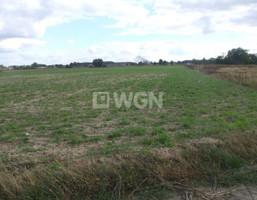 Działka na sprzedaż, Niemstów, 5000 m²