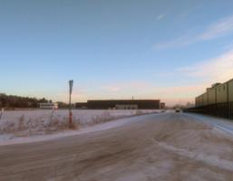 Działka na sprzedaż, Niepruszewo, 25000 m²