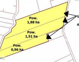 Działka na sprzedaż, Lewiczyn, 43500 m²