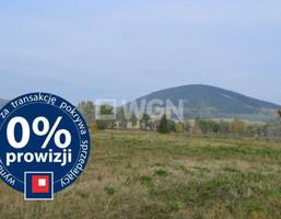 Działka na sprzedaż, Miszkowice, 2501 m²